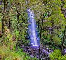Falls through the Trees by Michael Frost (@mjfrostphotos)