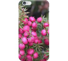 Pink Mountain Berries, Cradle Mountain, Tasmania, Australia. iPhone Case/Skin