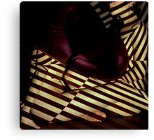 stripey daze Canvas Print