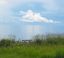 A Spot To Sit And Dream by Tracy Faught