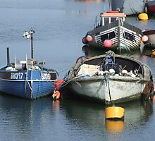 Anchored Fishing Boats by pcimages