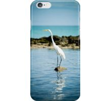 Galapagos Egret iPhone Case/Skin
