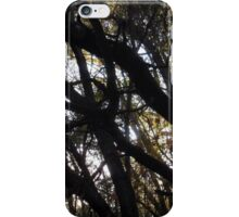 Black Branches iPhone Case/Skin