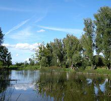 pond by KERES Jasminka