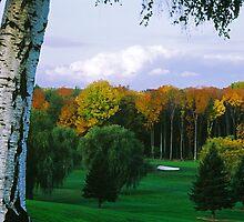 Sodus Bay Heights Golf Club by wolftinz