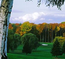 Sodus Bay Heights Golf Club by wolftinz