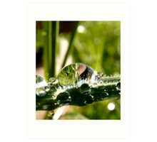 big drop of water on the grass Art Print