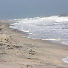 When Beach And Ocean Collide by Stormy Brannan