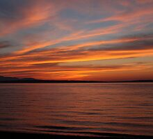 Puget Sound Sunset 060309 by Barb White