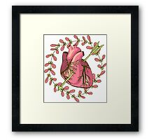 heart anatomical Framed Print
