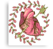heart anatomical Canvas Print