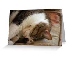 Sweet Dreams Greeting Card
