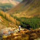 Model Countryside - Near lake Vyrnwy by Matt Sillence