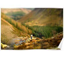 Model Countryside - Near lake Vyrnwy Poster
