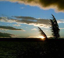 English Bay Sunset_No. 2 by Y.J. Wang