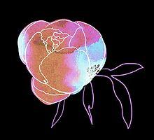 Peony flower by OlgaBerlet