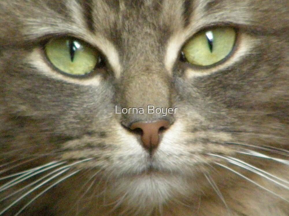 Smokey Eyes by Lorna Boyer