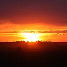 Prairie Sunset by Leslie van de Ligt