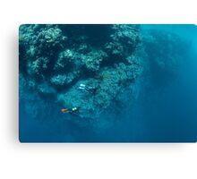 Wall Diving Canvas Print