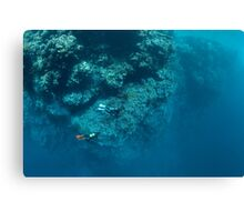 Wall Diving Canvas Print