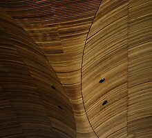 Wood Roof by Paul O'Neill