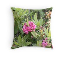 Lambkill in the bog Throw Pillow