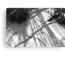Snow and Bushes Canvas Print