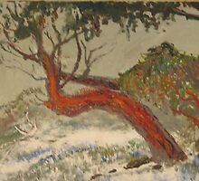 Snow gum ( inspired by  a photo by Donovan Wilson) by newmonet
