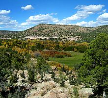 Mimbres Valley by Vicki Pelham