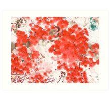 Chinese Wattle Art Print