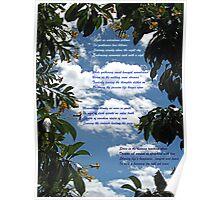 Eiderdown Pillows Poster