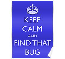 "Keep Calm and ""find that bug"" - software engineering, developer, coding, debugging, debugger Poster"