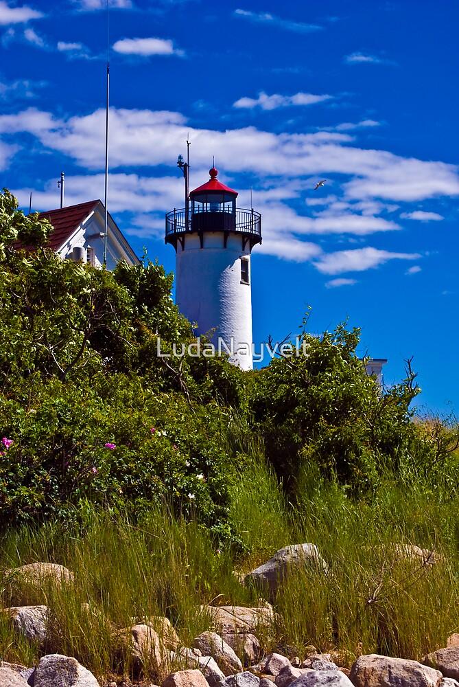 Lighthouse, Gloucester , MA by LudaNayvelt