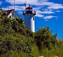 Lighthouse, Gloucester , MA by LudaNayvelt
