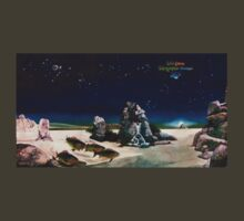 Tales from Topographic Oceans - Yes by MacLeod