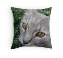 Earl eyes Throw Pillow