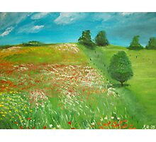 Polish meadow Photographic Print