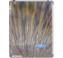 Shinny Wood iPad Case/Skin