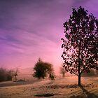 Autumn Morning by Geoff Carpenter