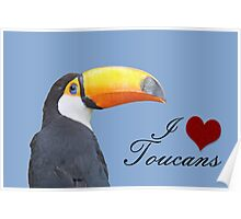 I love toucans blue Poster