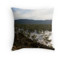 Todd River in flood Throw Pillow
