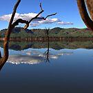 Lake Hume 5 by John Vandeven