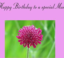 Happy Birthday to a special Mum by Sharon Perrett