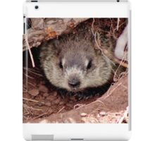 Groundhog III iPad Case/Skin