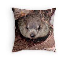 Groundhog III Throw Pillow