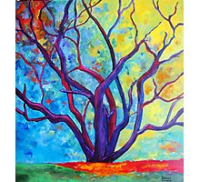 Bright Purple Tree Photographic Print