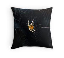 Brown spider close-up Throw Pillow