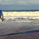 Bring On The Surf by Fiona Christensen