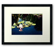 Beauty is Genius  Framed Print