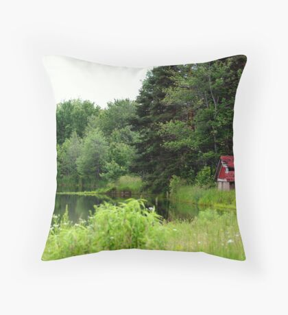 The Old Springhouse Throw Pillow